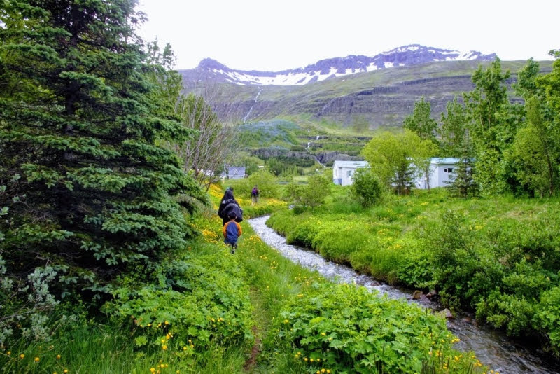 hiking Seydisfjordur