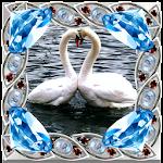 Diamond Photo Frames Icon