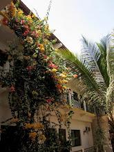 Photo: Our hotel at Saint-Louis
