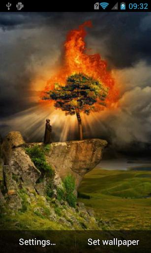 Fiery tree Live Wallpaper