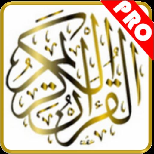 Al Quran Perkata Pro