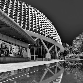 esplanade in singapore by Paul Cowell - Buildings & Architecture Public & Historical ( esplanade in singapore, pwcbuilding )