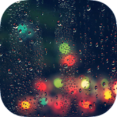 Relax Rain : Peaceful Melodies and Sleep Sounds