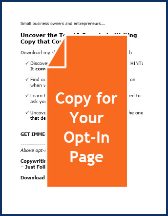 Copywriting 101 for Small Businesses - Opt-in Page Copy