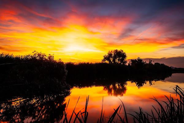 Al tramonto di laura_bazzy_bazzan
