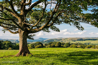 Photo: The Dales viewed from Wigglesworth