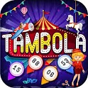 Tambola Housie - 90 Big Balls Bingo icon