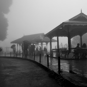 Way to Heaven.. by Anupam Pal - Public Holidays Other ( darjeeling )