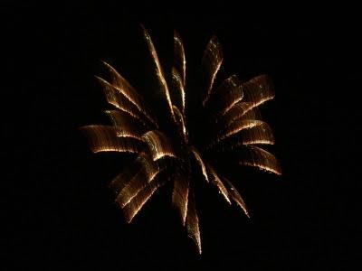烟火晚会  - 丹丹 - 幸福花儿开。。。