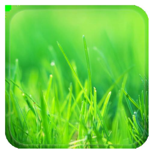 Aquaiver Grass Live