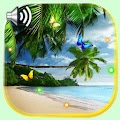 Beach Palm Tree APK