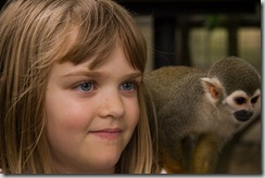 A monkey. And a squirrel monkey.