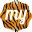 My Wild Cats – HD Wallpaper New Tab Theme