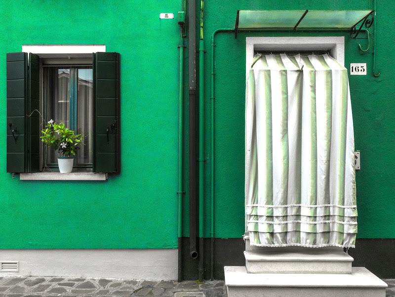 Verde Buranese di Caterina Ottomano