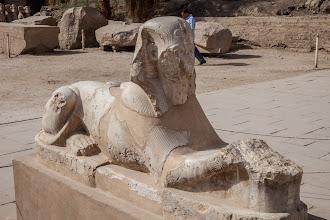 Photo: karnak, first court, sphinx of ?