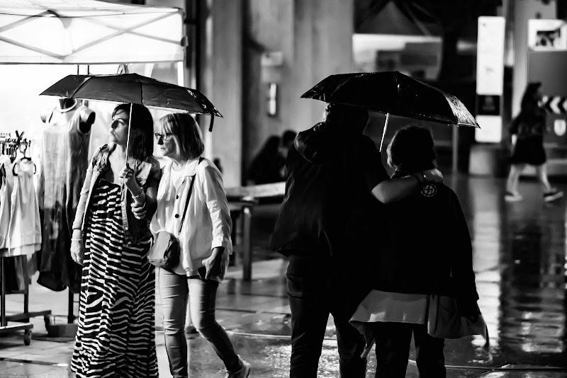 verso l'autunno in bianco e nero di fabrizio_fontana