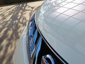 ムラーノ PNZ51 350XV FOUR  2009年2月5日のカスタム事例画像 P42Dさんの2019年12月18日15:34の投稿