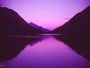 Fotografija: terapia purple 36