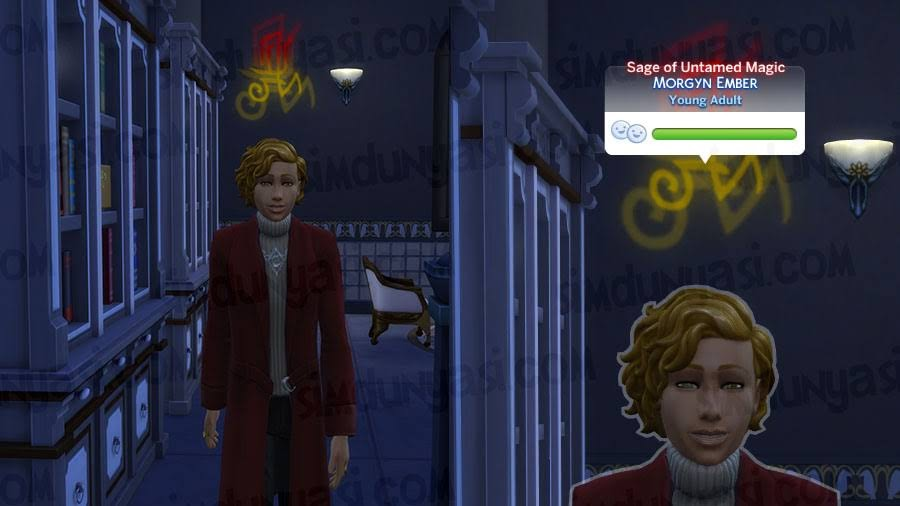 The Sims 4 Realm of Magic Sage of Untamed Magic