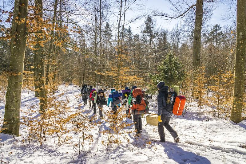 Die Gruppe macht sich mitsamt Gepäck im Wald auf den Weg, um ein Nachtlager zu finden
