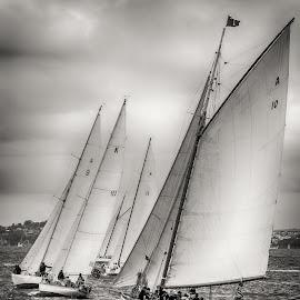 Historic yachts racing, Auckland Harbour. by Graeme Hunter - Black & White Landscapes