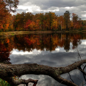 Fall Reflections by Marilyn Magnuson - Landscapes Forests ( fall, fall lake framed by tree, dark clouds, lake, fall reflections, wide view of lake )