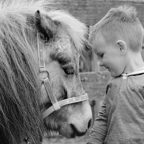 Tiffany & Ethan by Graham MacDougall - Babies & Children Toddlers ( pony, black and white, horse, children, toddler, boy )