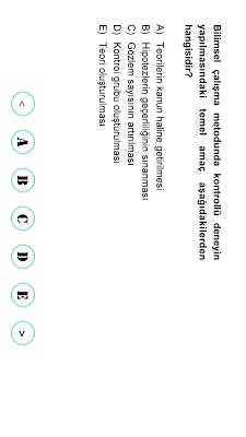 Okyanus Test - screenshot