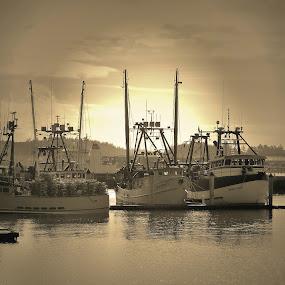 by Tammy Cassford - Transportation Boats (  )