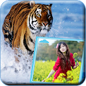 Animals Photo Frame icon