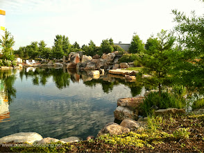 Photo: Acorn Ponds & Waterfalls, we install ponds, water features and low maintenance water gardens. Renovation and maintenance are our specialties. Check out our website www.acornponds.com and give us a call 585.442.6373.   World's Most #RecreationalPond Construction by Certified Aquascape Contractors, Monroe County, Rochester NY 585.442.6373. Acorn Ponds & Waterfalls participates in the #PondStars Construction of this very #LargeEcosystemPond in 2008.  To learn more about Ponds please click here: www.acornponds.com/ponds.html  For more info about this project, please click here: www.facebook.com/notes/acorn-landscaping-landscape-designlightingbackyard-water-gardens/large-waterfall-ecosystem-pondwaterfall-fish-pond-with-grottowetland-filtration-/330470840323378  Service areas include Rochester NY, Webster NY, Greece NY, Brighton NY, Pittsford NY, Penfield NY, Fairport NY, Irondequoit NY, Victor NY Rush NY, Henrietta NY.  To see more of our #pondinstallations on Facebook click here: www.facebook.com/media/set/?set=a.464911070212687.94604.103109283059536&type=3  Find us on Houzz here: www.houzz.com/pro/acornlandscapedesign/acorn-landscaping-and-ponds-llc  Check out our photo albums on Pinterest here: www.pinterest.com/acornlandscape/  Click here for a free Magazine all about Ponds and Water Features: http://flip.it/gsrNN  Acorn Ponds & Waterfalls   585.442.6373 www.acornponds.com