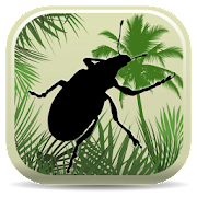 App Icon for Palm Screening Aid Key App in Czech Republic Google Play Store