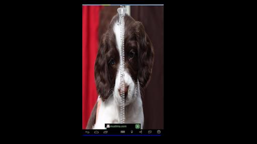Best Puppy Zipper Lock Screen