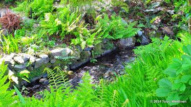 Photo: Luostarin puutarhasta: puro virtaa puiston halki.