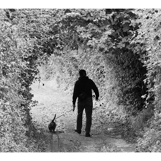 #passeggiata #cane #bestfriend #dachsbracken #togheter #volgogrosseto #volgoitalia #igertoscana #trekking #naturfoto #nature #natura #toscana #tuscanybeez #tuscany #volgoblackandwhite #blackandwhite di utente cancellato