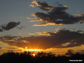 Photo: Year 2 Day 219 - Sunset in Our Rest Spot (25Kms South of Marla)