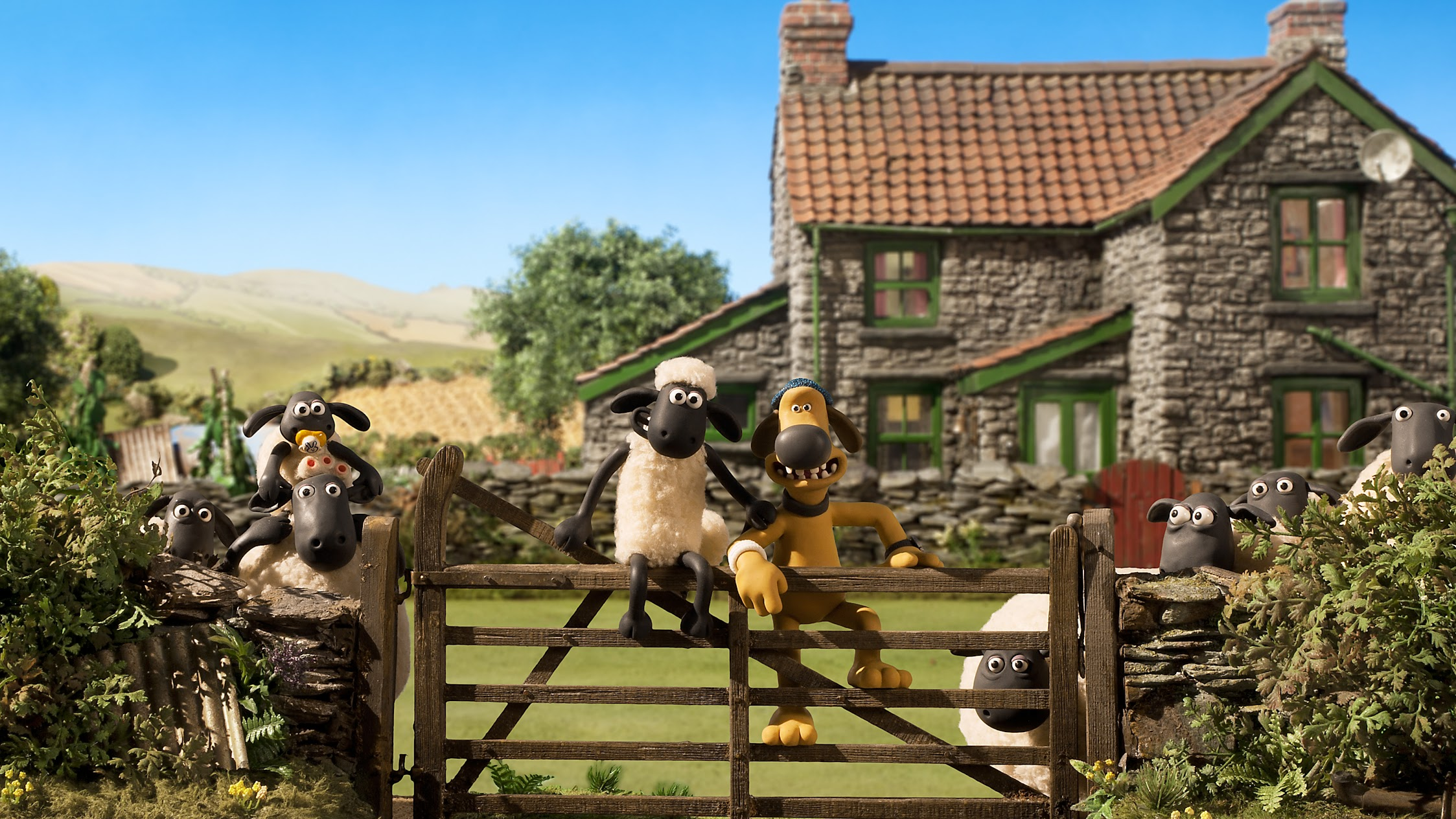 Adult Sheep Finder New Zealands 1 internet dating site