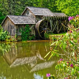 Maybry Mill by Sandy Friedkin - Buildings & Architecture Public & Historical ( water power, water wheel, grind flower )