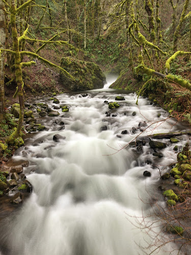 Waterfall in Oregon by Kathy Dee - Nature Up Close Water ( park, nature, green, waterfall, moss, rocks, woods, river,  )