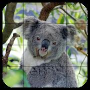 Tile Puzzles · Australia