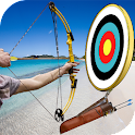 Archery Master Arrow Shooting icon