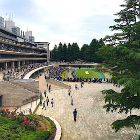 【魅惑のギャンブル場メシ】東京競馬場で味わいたい最高にクリスピーなフライドチキン / 「戸松」のフライドチキン