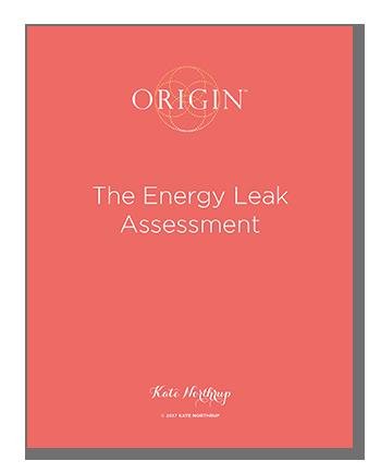 The Energy Leak Assessment
