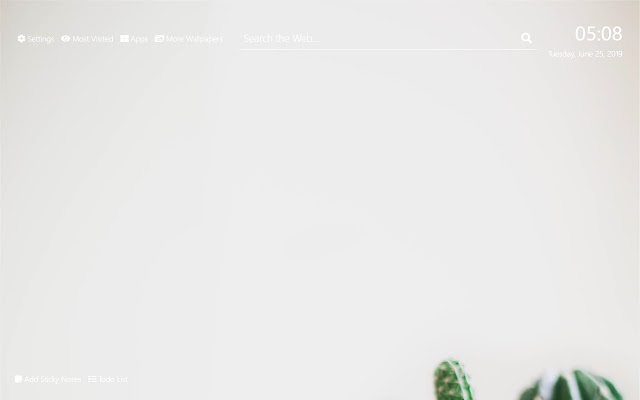 Cactus Wallpaper HD New Tab Theme©