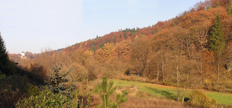 Photo: BB040385 Ojcow - kolory jesieni