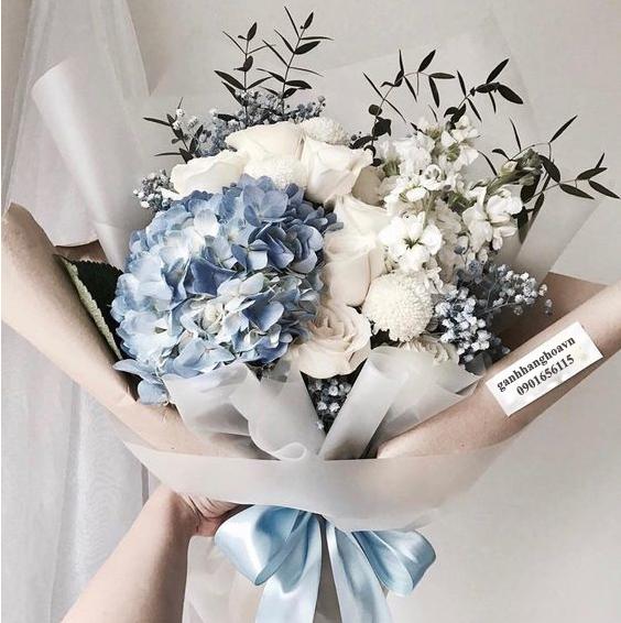 tặng hoa cẩm tú cầu