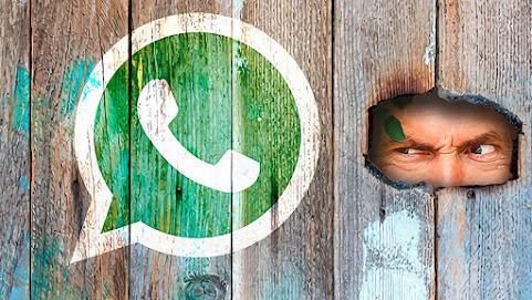 Spiare WhatsApp: chat, foto e messaggi audio