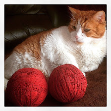Photo: Mr. Tom and the crochet kit #intercer #crochet #balls #red #cat #cats #catsofinstagram #pet #pets #knit #funny #orange #colours #contrast #pretty #play #game - via Instagram, http://ift.tt/1A5y9jL