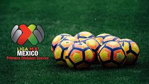 Mexico Primera Division Soccer thumbnail
