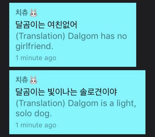 jisoo v live channel plus dalgom